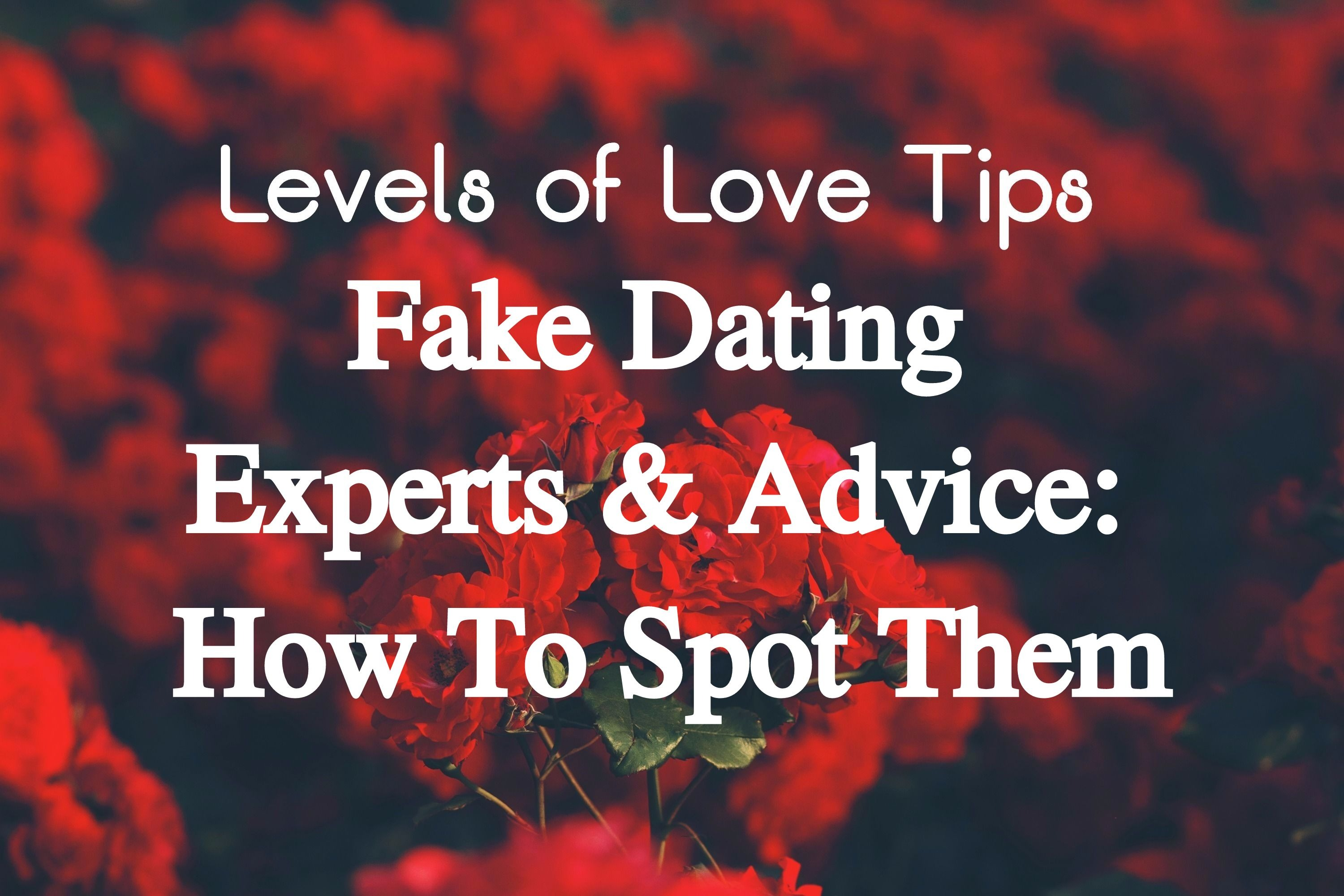 Experts advice on dating